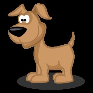 Articles sur les chiens