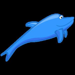 Articles sur les dauphins