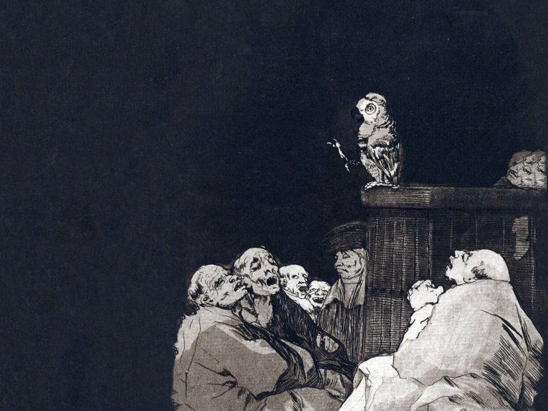 Les animaux devant la Justice – Le perroquet qui retourne sa veste