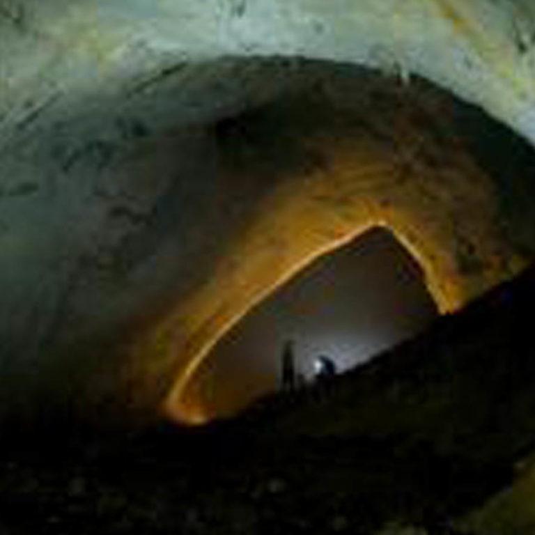 La grotte de Movile, isolée depuis des millions d'années