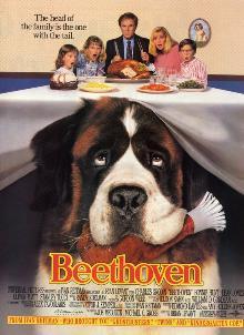 Un saint-bernard qui aboie quand il entend Beethoven